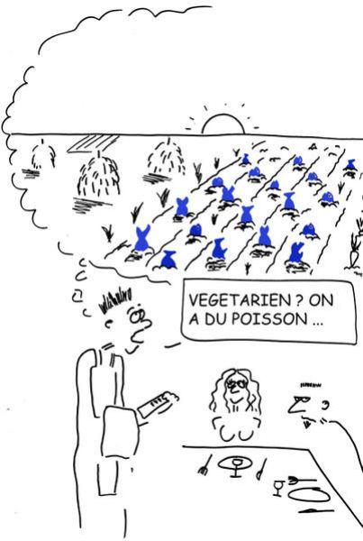 champ-de-poisson-copie1.jpg