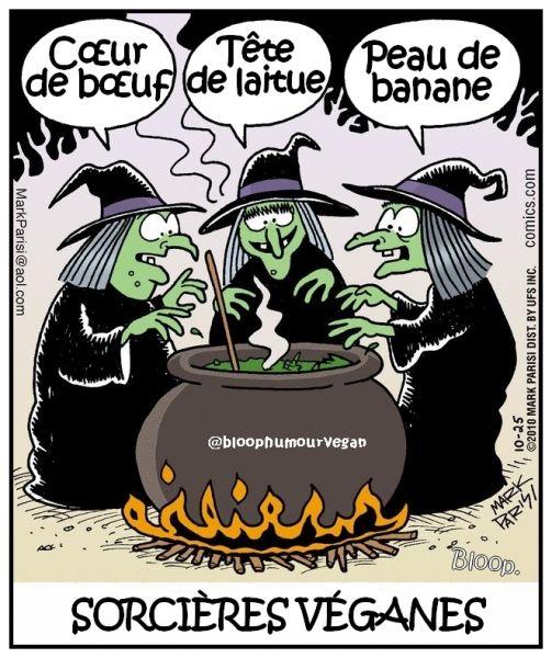 sorcieres.jpg
