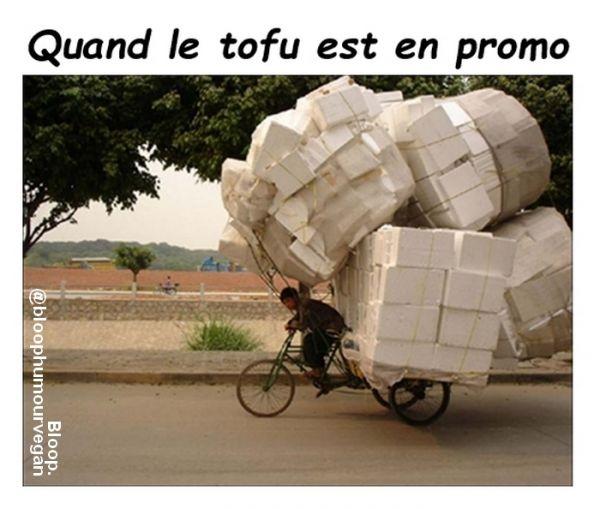 tofupromo.jpg